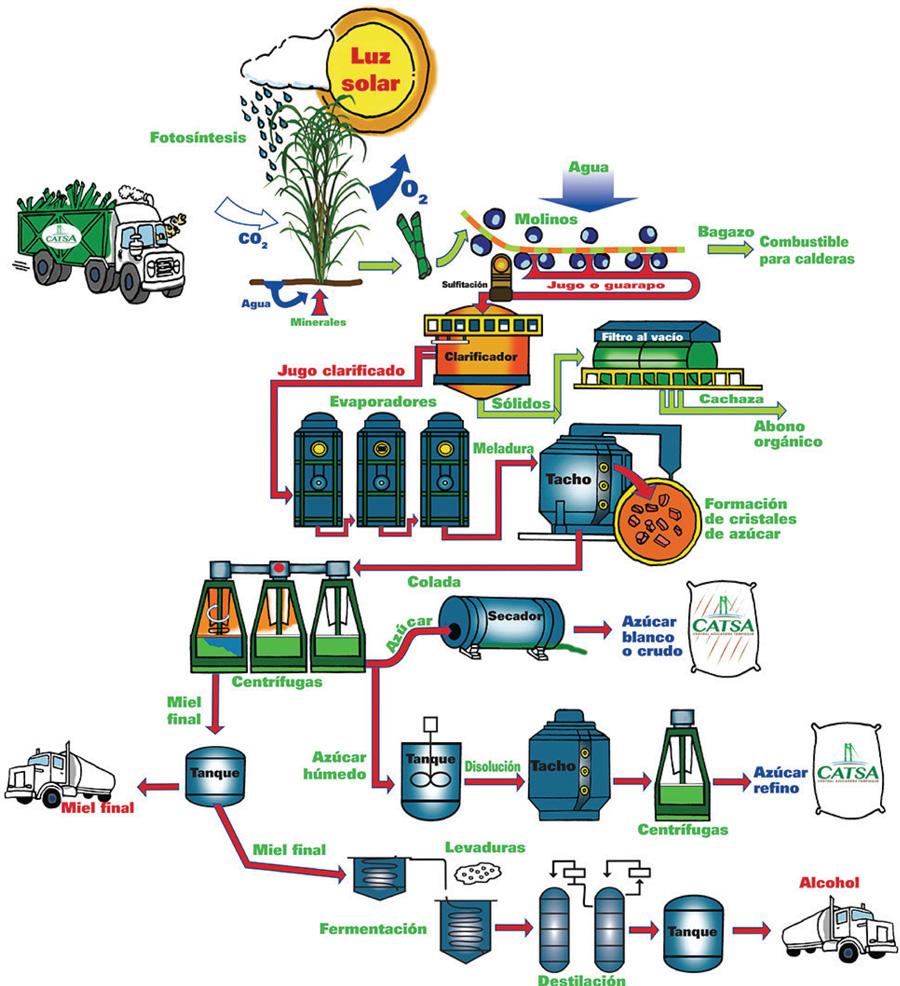 Fabricación del Azúcar   CATSA - CENTRAL AZUCARERA TEMPISQUE, S.A.